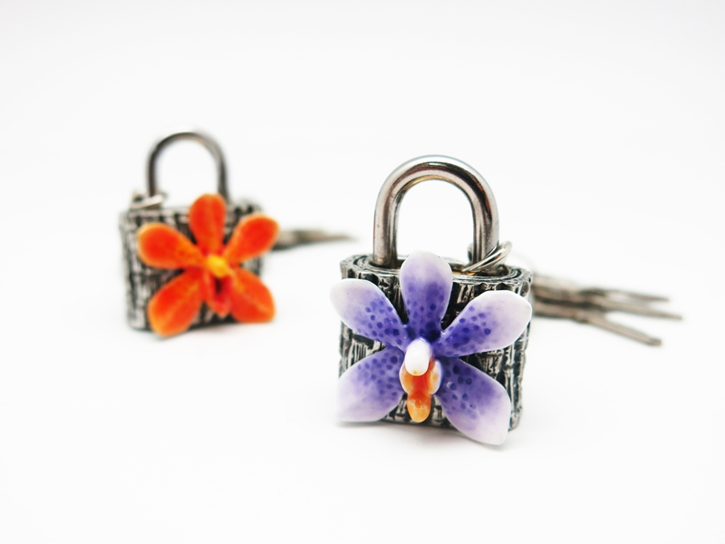 KEY LOCK ORCHID